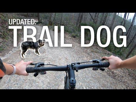 Update: Mountain Biking With My Toy Australian Shepherd!