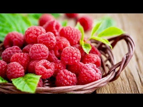 6 Incredible Reasons To Eat Raspberries Every Day!