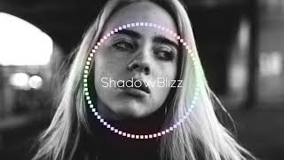 Billie Eilish | Bass Boosted Mix