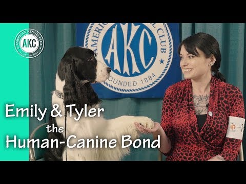 Emily and Tyler - The Human Canine Bond - AKC National Obedience Championship