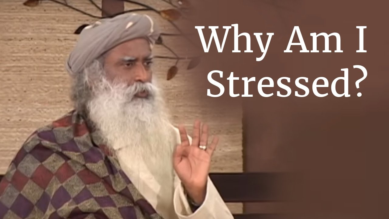 Why Am I Stressed? | How to cope up with Stress in daily life