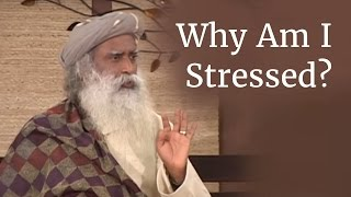 Why Am I Stressed? - Sadhguru