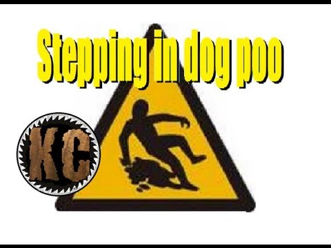 Stepping in dog Poo!!!