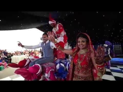 Lions Of Punjab Bhangra Dancers at Wedding || Mandy DHillon || Vid-Ego