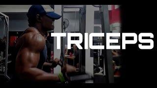Rutina De Triceps - Triceps Workout