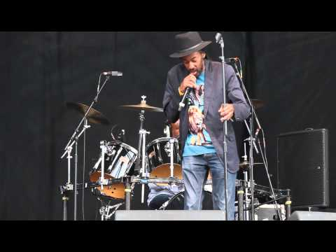 Aswad at Leicester Music Festival (LMF) 2014 25/07/14