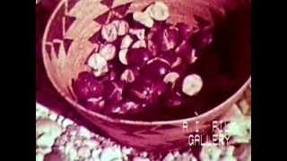 Nisenan (Maidu) Buckeyes: California Indians processed wild buckeyes, healthy food, 1961