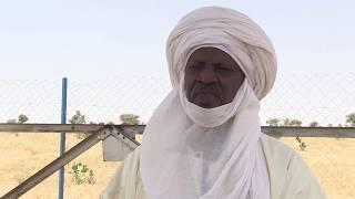 L'élevage au Niger,  un secteur d'avenir