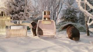 Chloé's winter wonderland of gifts