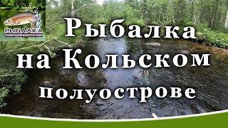 Рыбалка на Кольском полуострове. Форель в Мурманской области.  Август 2019