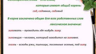 Персональный репетитор по русскому языку(Видео о том, как происходят занятия с