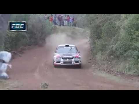 Perro con mucha  suerte Rally  !!!