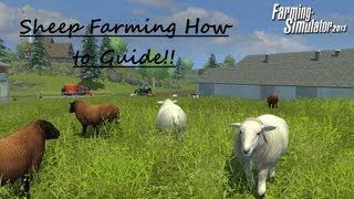 Farming Simulator 2013 Sheep Farming How To Guide