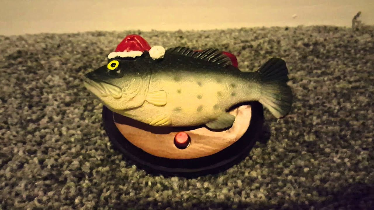 Big mouth billy bass singing christmas ornament youtube for Big mouth billy bass singing fish