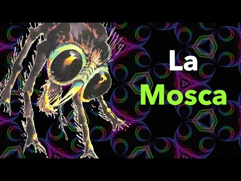El Científico que se Transformó en INSECTO | La Mosca