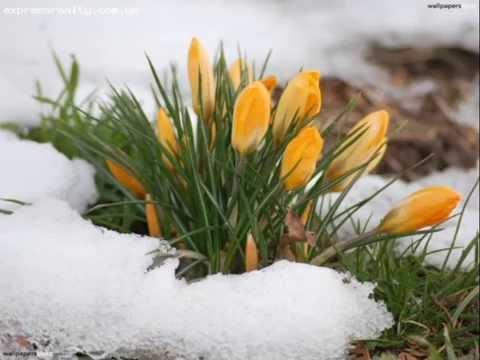 Зимняя колыбельная для любимой
