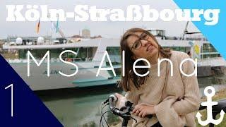 #Vlog1 MS Alena Kurzreise (Köln-Straßbourg) - Rennen gegen das Schiff! - Phoenix Reisen