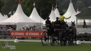 Mareike Harm   Ger   CAIO Aachen 2017   Dressage Day 1   Test 3CH4
