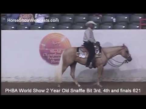 2013 Palomino World Show 2 YO Western Pleasure Class 621 Second Go Around
