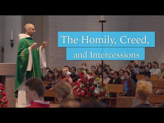The Homily, Creed, and General Intercessions | Understanding the Mass