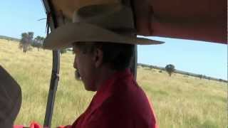 Leahton Park Texas Longhorn Wagon Tours - Best Birthday! Charters Towers