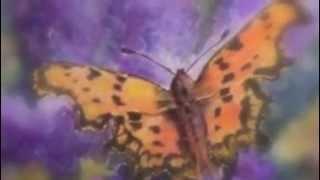 """""""madam butterfly"""" malcolm mclaren"""