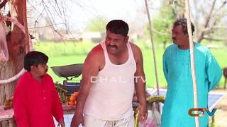 Bahane baz #Helmet Rocket Aur Tedi New Punjabi Comedy | Funny Video 2020 | Chal TV