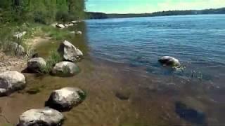 Берег Суходольское озеро CAMERA MI DRONE 4K