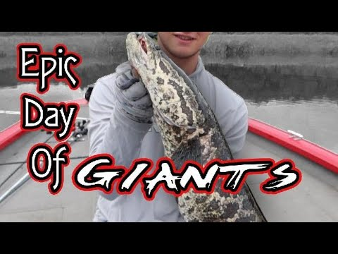Fishing The Rappahannock | Epic Day Of Giants!!!