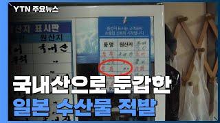"""""""손님이 꺼릴까 봐""""...일본산 수산물 국내산으로 속여 판매 / YTN"""
