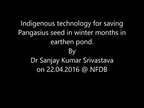 Indigenous technology for saving Pangasius rearing