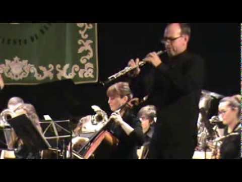 Banda Santa Cecilia (Bargas) Concierto 08/02/2014