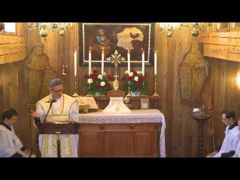 13° d  Pentecoste-  Festa San Pio X (Omelia)