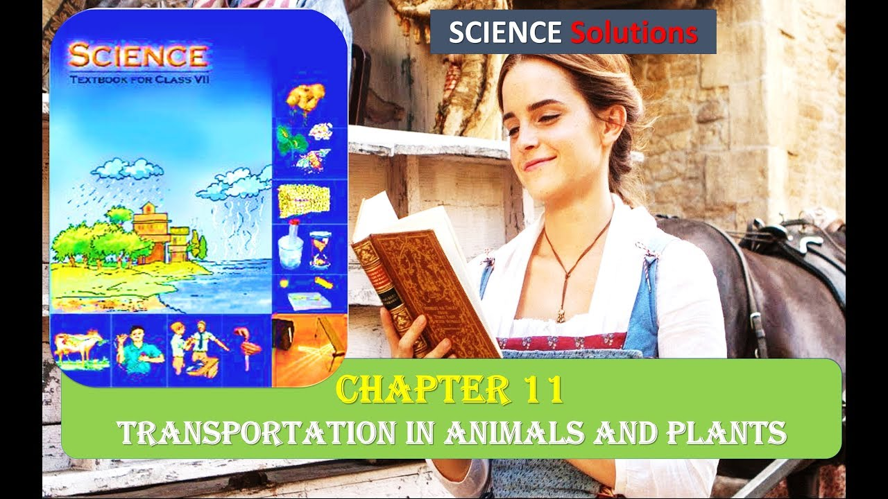 ncert class 7 science solution