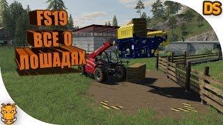 Как ухаживать за лошадьми в Farming Simulator 19