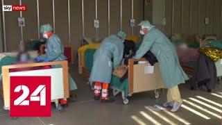 Ученые выяснили, когда наиболее опасен заболевший коронавирусом человек - Россия 24