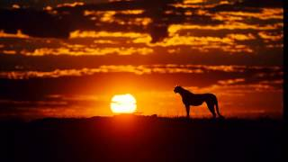 Sunset in Africa - A visual poem poem by Christian Chriss Zen  [Cristian Cirstocea]