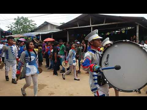 Bandas indigenas Alto Solimoes da Amazonia