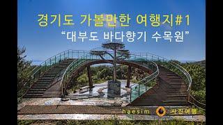 경기도 가볼만한 여행지#3   대부도 바다향기수목원