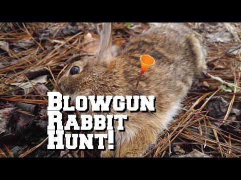 [GRAPHIC] Blowgun Rabbit Hunting Cold Steel Razor Broadhead Darts