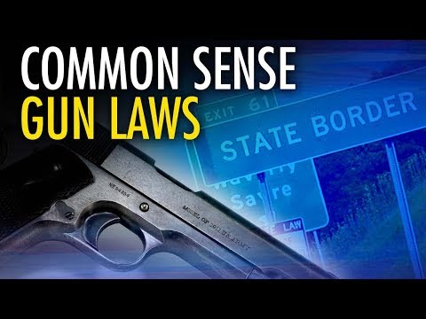 Dr. John Lott: What he'd advise Trump on gun laws & concealed carry rights