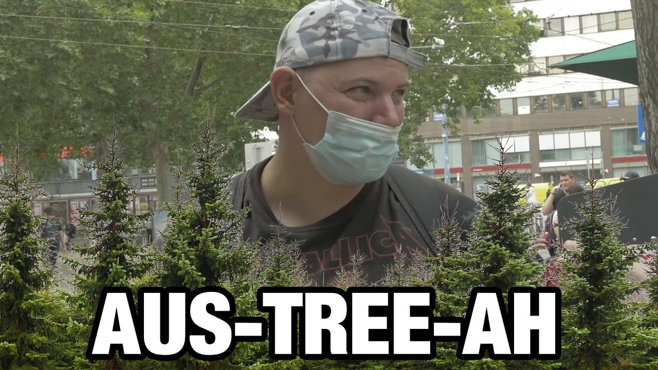 Donald Trump über Österreich: explodierende Bäume - forest city - exploding trees in Austria