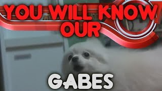YTPMV Xenoblade Chronicles: You Will Know Our Gabes