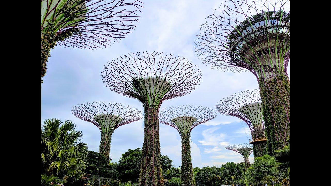 Futuristic Gardens of Singapore - Singapore