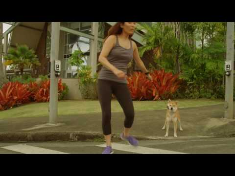 "Hawaii State Department of Transportation - ""Walk Wise Dog"""