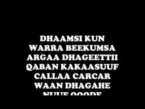 Download Calla carcar  Hayyu fi Artist beekamaa Oromoo