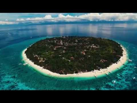 Bohol Balicasag Island Diving Tour