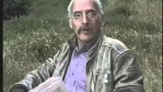 Кислотные дожди  Учебный фильм по экологии
