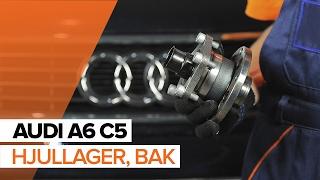 Så byter du hjullager bak på AUDI A6 C5 GUIDE | AUTODOC