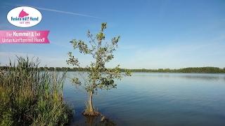 FERIEN MIT HUND in Nordrhein-Westfalen - Urlaub in NRW auf vier Pfoten